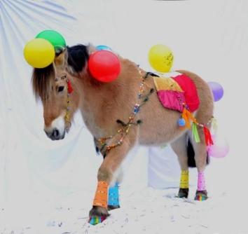 poney déguisé