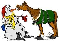 snowman-horse-color